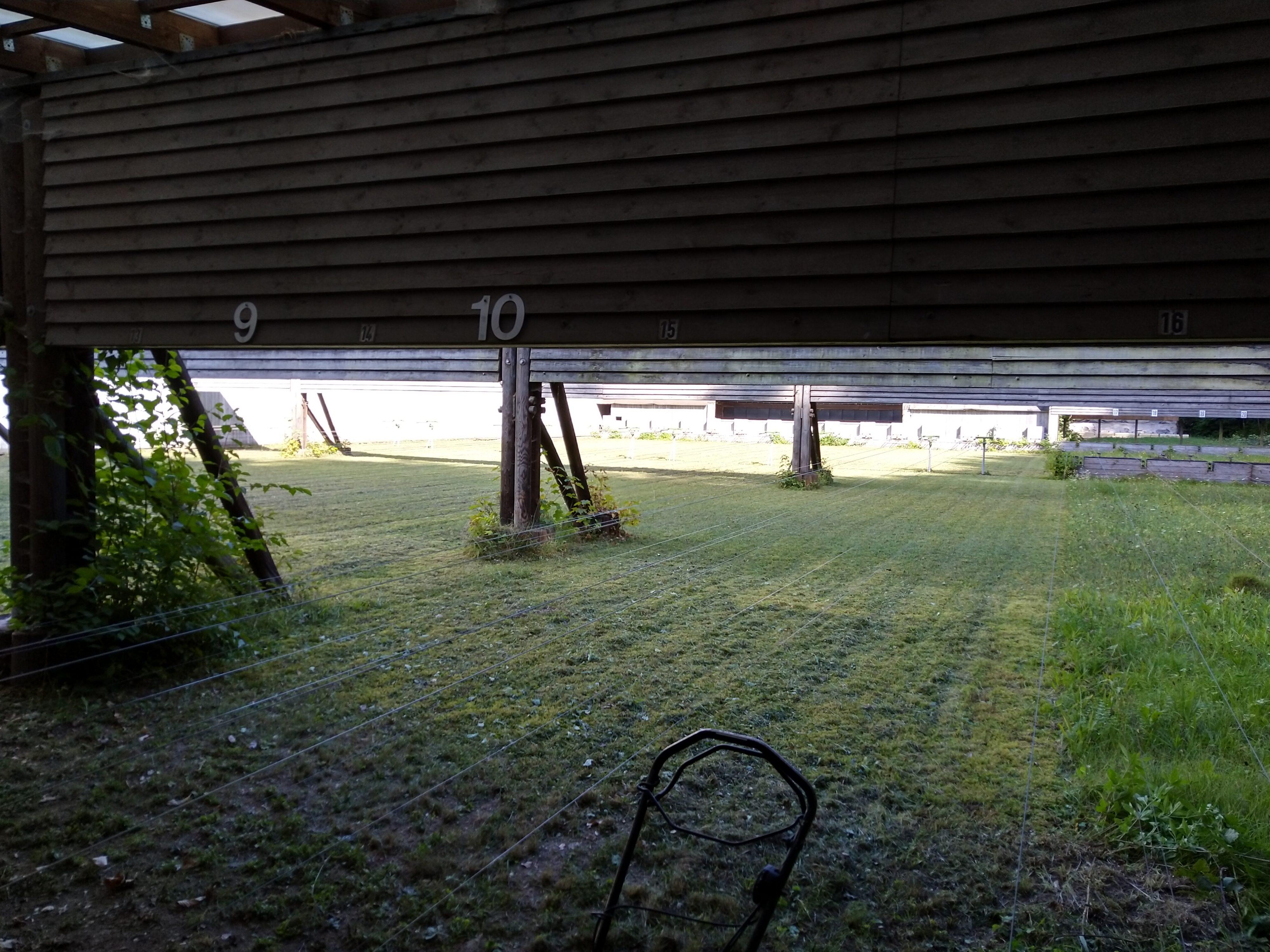 Gemähter Rasen auf der 50m Bahn